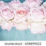 beautiful delicate roses on a... | Shutterstock . vector #658899022