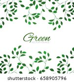 green foliage background.... | Shutterstock .eps vector #658905796