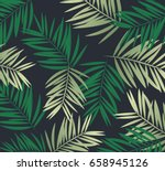 background palm coconut bamboo... | Shutterstock .eps vector #658945126