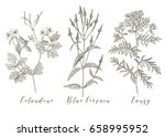 vector hand drawn collection of ... | Shutterstock .eps vector #658995952