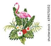 exotic birds pink flamingo ... | Shutterstock .eps vector #659070352