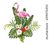 Exotic Birds Pink Flamingo ...