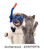 Stock photo funny dog in snorkeling mask hugs cat isolated on white background 659070976