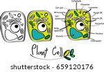 plant cell doodle vector. | Shutterstock .eps vector #659120176