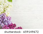 colorful lilac flowers on the... | Shutterstock . vector #659149672