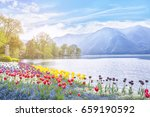 beautiful view of the lake... | Shutterstock . vector #659190592