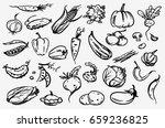 vegetable set. hand drawn... | Shutterstock .eps vector #659236825