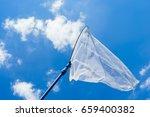 Butterfly Net In The Blue Sky ...