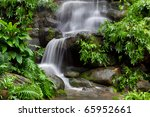 Beautiful Rain Forest At Doi