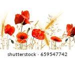 poppy meadow on white... | Shutterstock . vector #659547742