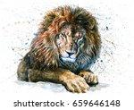 Stock photo lion 659646148