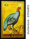 Small photo of KINGDOM OF BURUNDI - CIRCA 1960s: A stamp printed in Burundi shows a Afropavo congensis, circa 1960s
