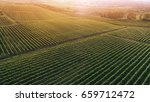 aerial view  of a green summer... | Shutterstock . vector #659712472