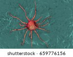 cancer cell  tumour cell  close ...   Shutterstock . vector #659776156