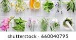 fresh herbs on white masaic... | Shutterstock . vector #660040795