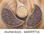 seeds of yellow and black... | Shutterstock . vector #660059716