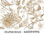 vintage japanese chrysanthemum... | Shutterstock . vector #660094996