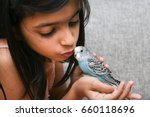 Stock photo young indian girl kid playing with blue pet love bird budgie on her hand kerala india 660118696