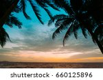 silhouette of coconut palm tree ... | Shutterstock . vector #660125896