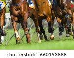 Stock photo horse race animals legs hoofs horse race animals closeup bodies legs hoofs speed power running 660193888