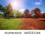 Autumn And Summer Park At Sunn...