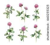 watercolor illustrations of... | Shutterstock . vector #660255325