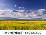 beautiful spring background... | Shutterstock . vector #660321802