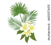hand drawn tropical palm leaves ... | Shutterstock .eps vector #660357655