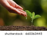 hands of farmer growing and... | Shutterstock . vector #660363445