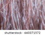 hair macro view  | Shutterstock . vector #660371572