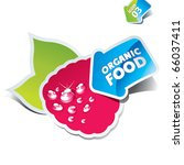 icon raspberry with an arrow by ... | Shutterstock .eps vector #66037411