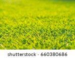 grass close up background | Shutterstock . vector #660380686