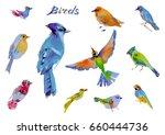 watercolor abstract decorative... | Shutterstock . vector #660444736