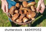 basket with mushrooms in hands. ...   Shutterstock . vector #660459352