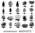 monochrome tree silhouette...