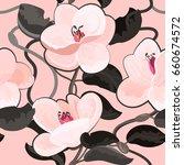 Magnolia Flowers  Bloom ...