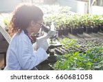 young biologist looking at...   Shutterstock . vector #660681058
