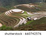Terraced Rice Fields In...