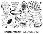 hand drawn exotic fruits.... | Shutterstock . vector #660938842