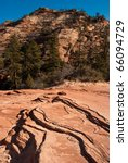 Zion National Park Geology - stock photo