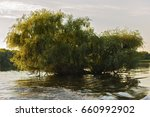 landscape with water and... | Shutterstock . vector #660992902