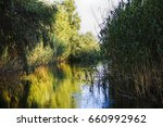 landscape with water and... | Shutterstock . vector #660992962
