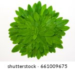 Green Round Frame With Small...