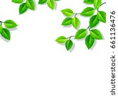 vector white background with... | Shutterstock .eps vector #661136476
