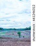 natural view at chiangmai...   Shutterstock . vector #661246312