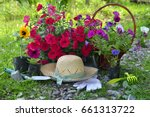 beautiful summer background... | Shutterstock . vector #661313722