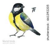 watercolor bird of isolated... | Shutterstock . vector #661392205