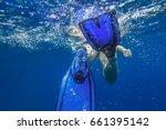 closeup of blue fins of... | Shutterstock . vector #661395142