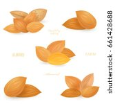 collection groups of almonds... | Shutterstock .eps vector #661428688