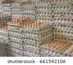 closeup of eggs on cartons at... | Shutterstock . vector #661542106